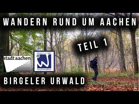 Birgeler Urwald // Wandern rund um Aachen - Teil 1