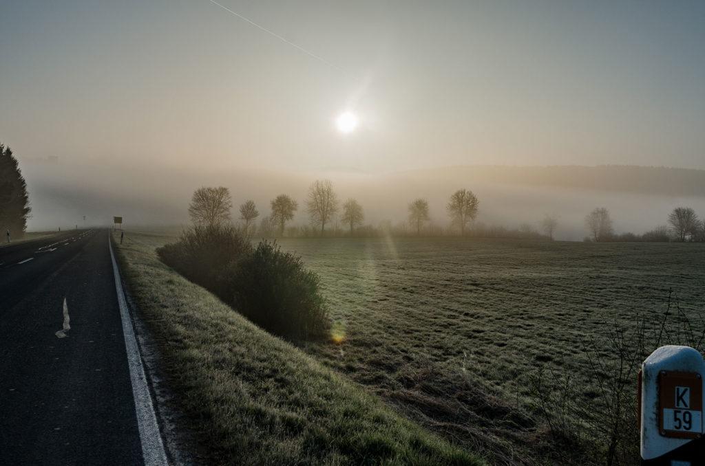 Morgengrauen-im-Nebel