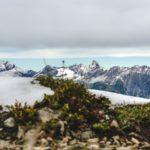 Alpenpanorama-2