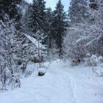 Trekkinglife-Winterwanderung-11