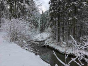 Abends grün, morgens weiß - Winterwanderung mit Zelt 1
