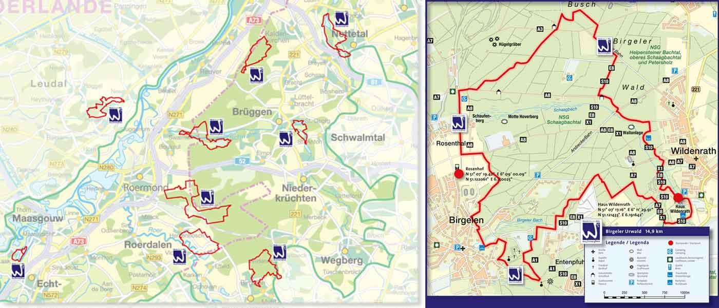 Birgeler-Urwald-Wandern-nrw-trekkinglife-02