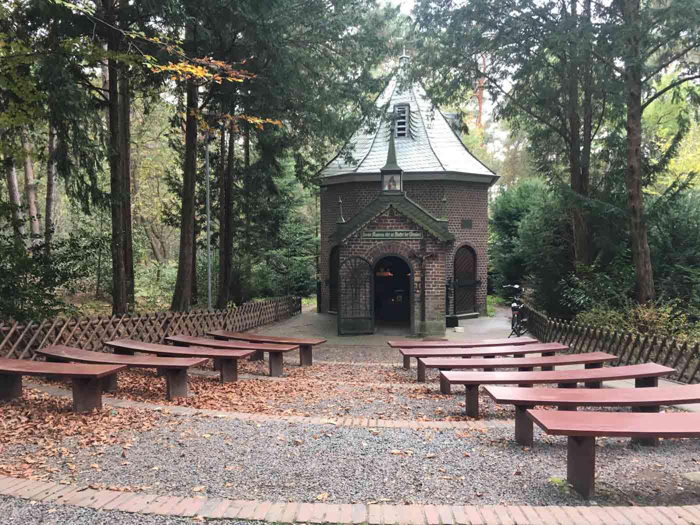 Birgeler-Urwald-Wandern-nrw-trekkinglife-04