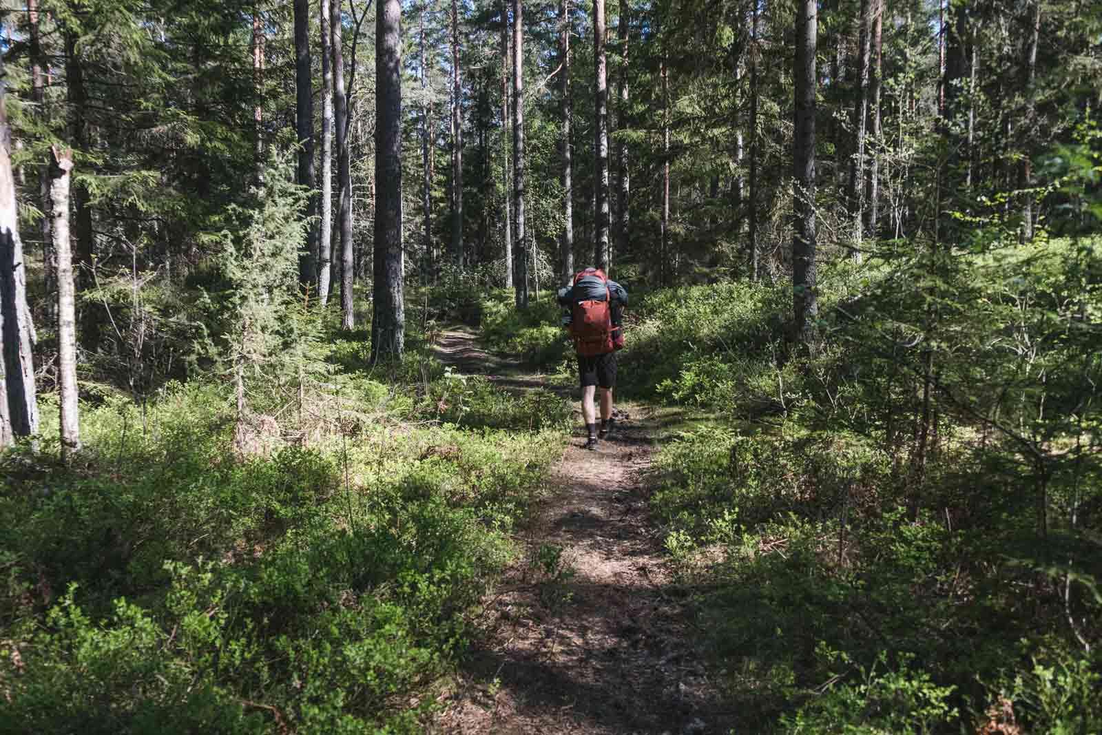 wandern-in-schweden-trekking-soermlandsleden-09