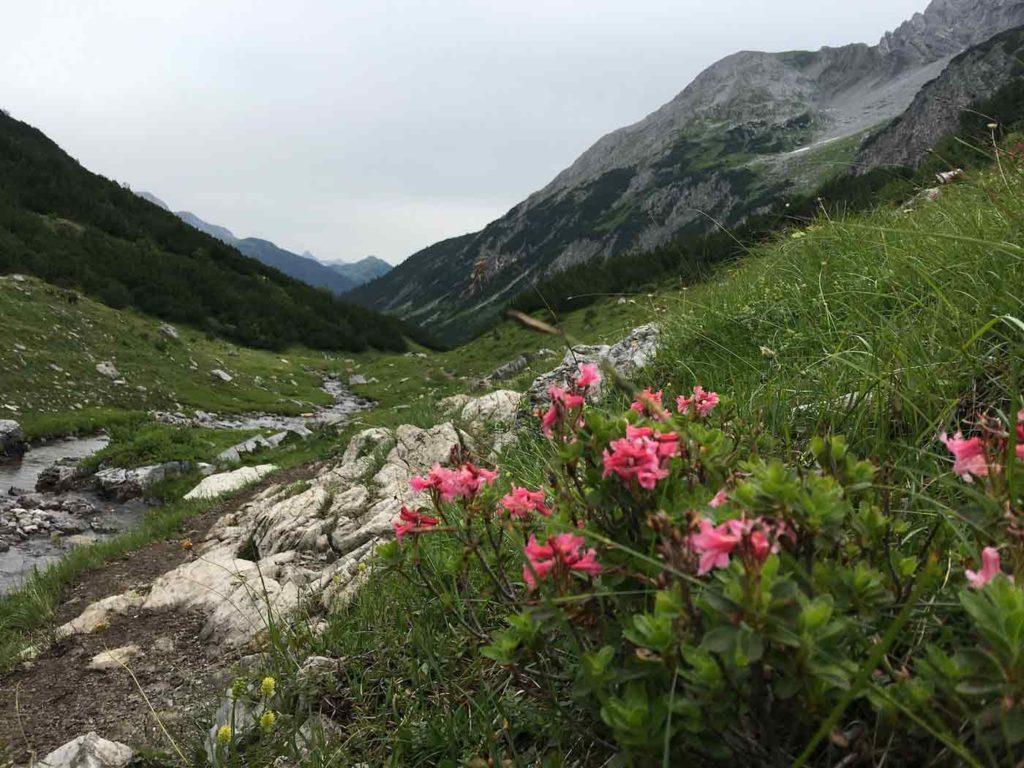lechweg-wandern-in-den-alpen-01