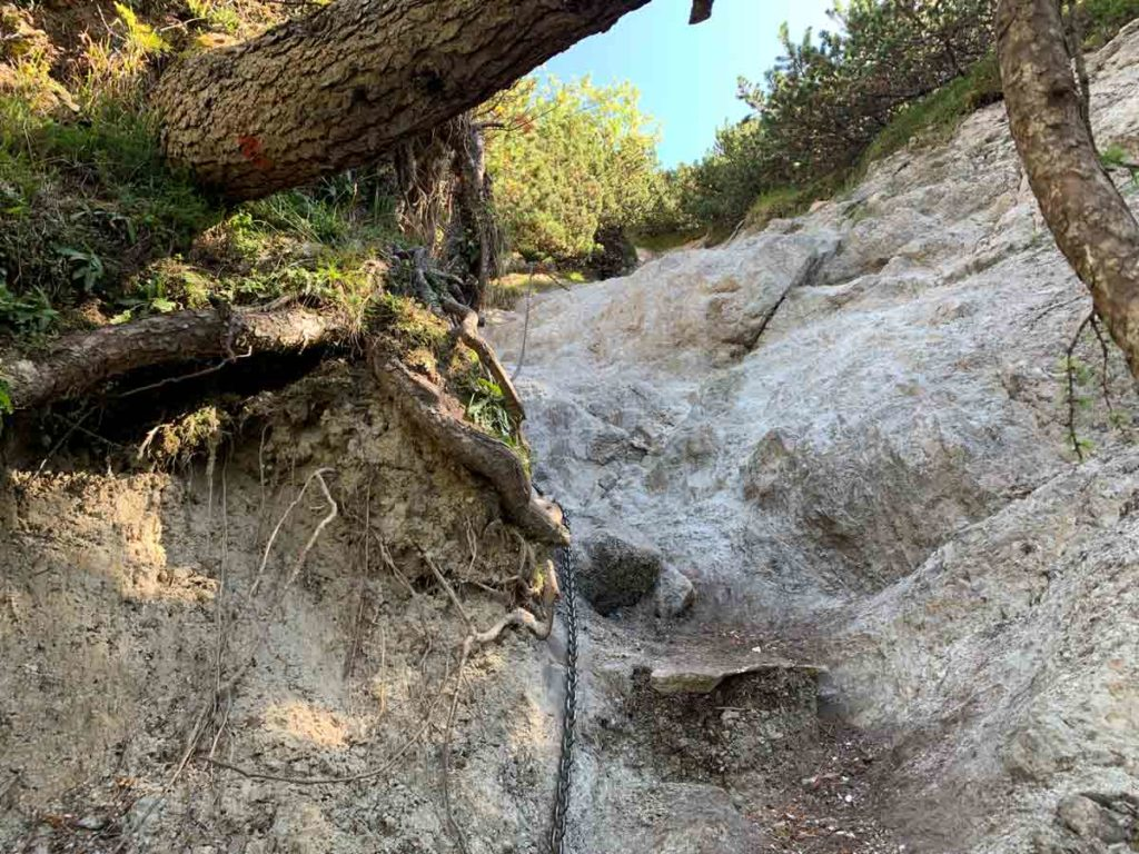 Abstieg vom Watzmann durch die letzte Rinne im Latschenwald
