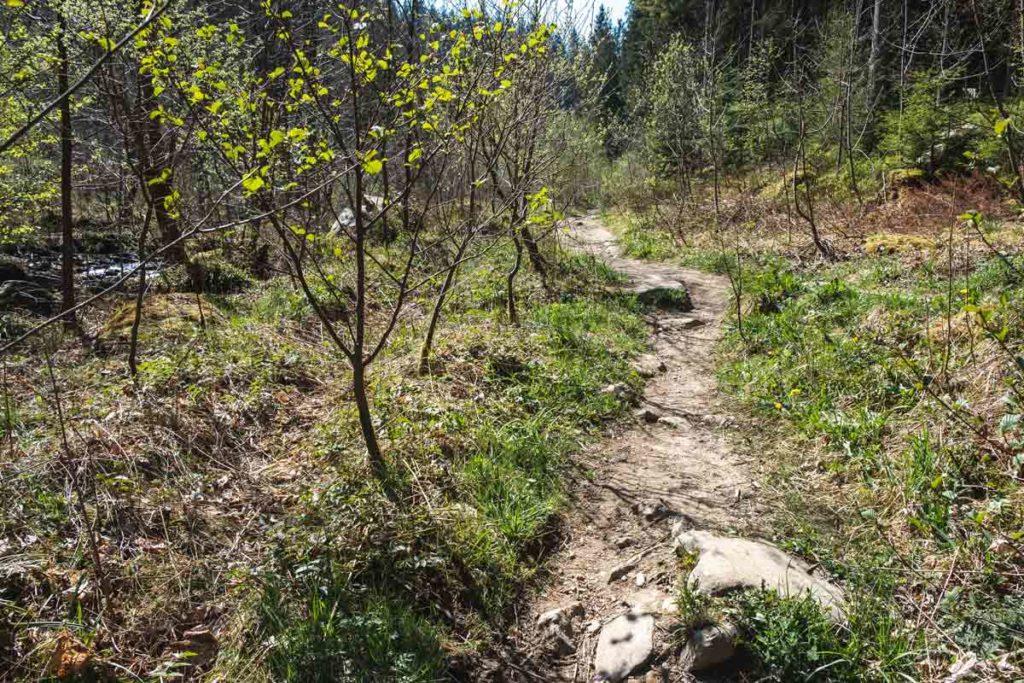 Wanderung entlang der Rur