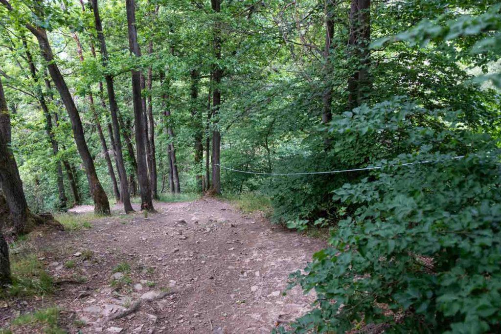 Alpiner Abstieg auf dem Natursteig Sieg