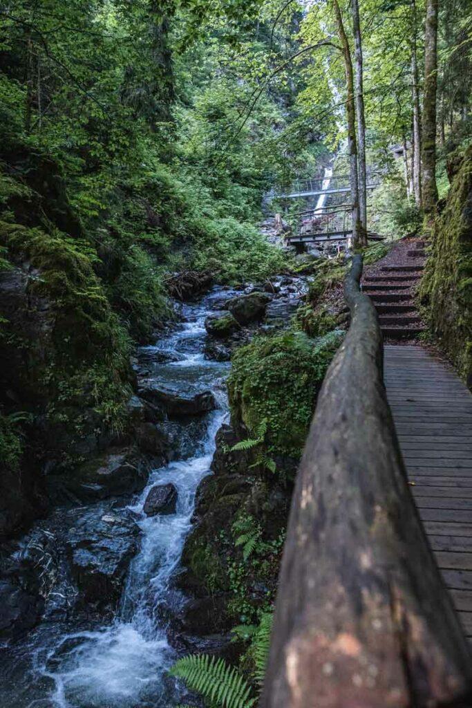 Eifersbacher Wasserfall auf dem Koasa Trail