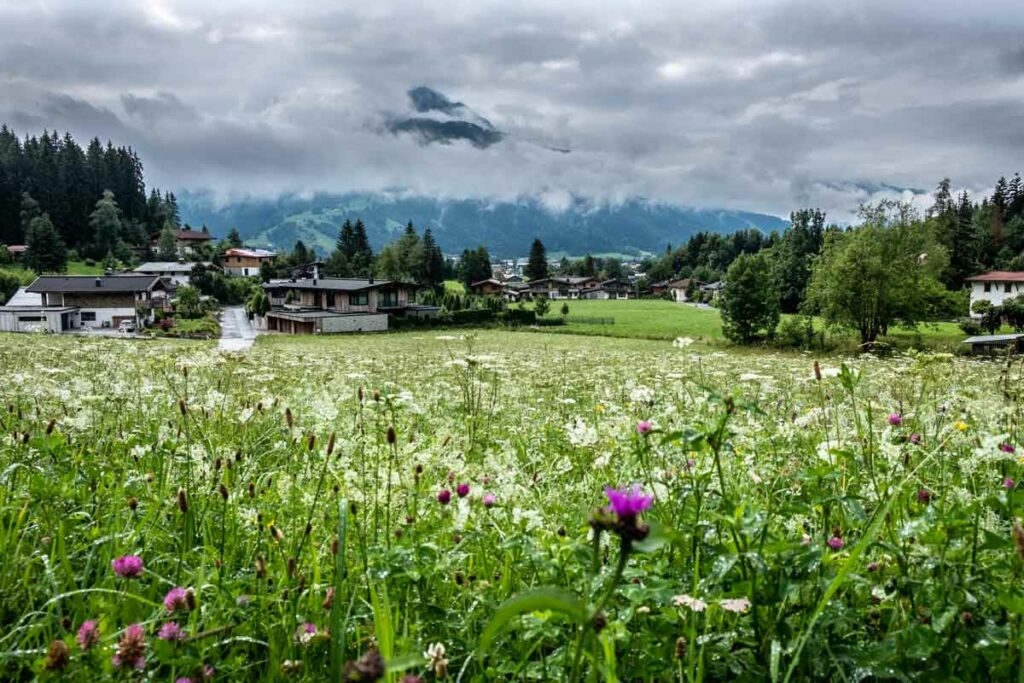 Blick auf St. Johann in Tirol
