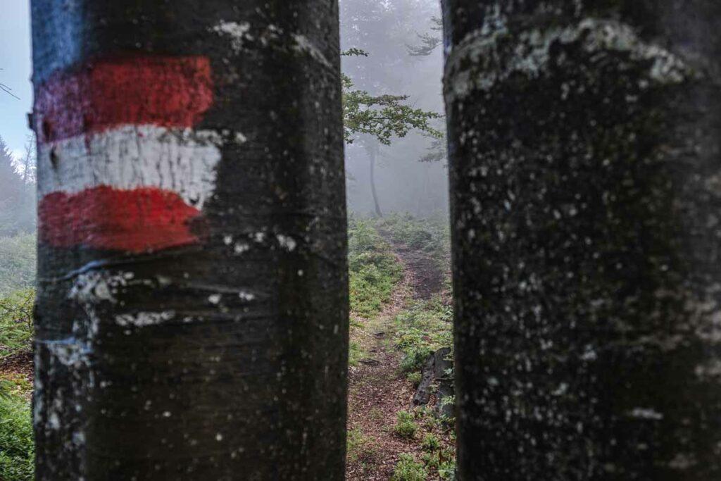 Markierung auf dem Koasa Trail