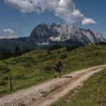 Koasa Trail mit Blick auf den Wilden Kaiser