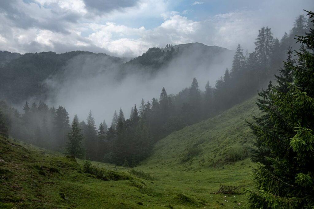 Nebelschwaden oberhalb der Grießbachklamm