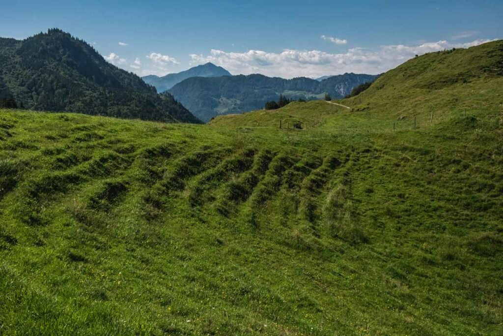 Ausblick von der Stubnalm auf das Kitzbüheler Horn und die Hohen Tauern