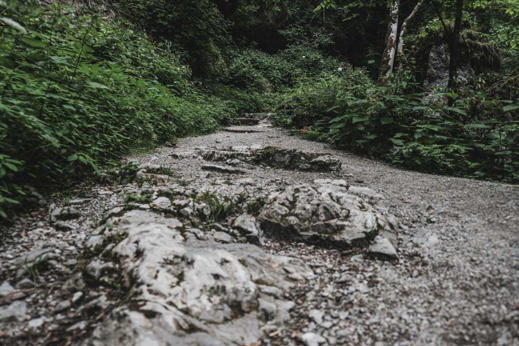 Einstieg Wanderweg Klamm Rundweg - Seisenbergklamm